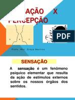 01 aula 01 SENSAÇÃO E PERCEPÇÃO.pdf