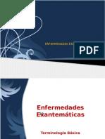 enfermedades exantematicas OK.pptx
