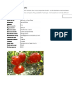 Tomate joyau de l'Idaho