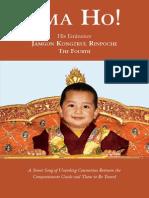 EmaHo Book