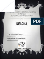Diploma Director