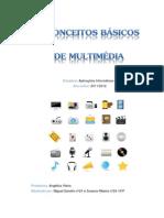 Conceitos Basicos Multimedia