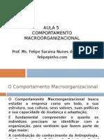 Comportamento Macroorganizacional