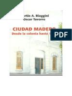 Historia de Ciudad Madero 2008