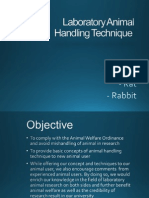 Animal Handling Technique