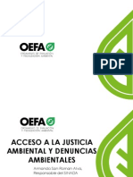 8. Acceso a La Justicia Ambiental y El SINADA