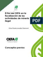 9. Rol Del OEFA en La Minería Ilegal