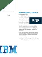 1 IBM InfoSphere Guardium
