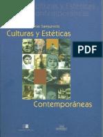 Javier Sanguinetti Culturas y Estéticas Contemporaneas
