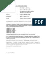 INFORME TECNICO N° 01-PRR