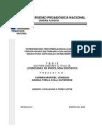 Intervención Psicopedagógica en Matematicas 3º Ciclo