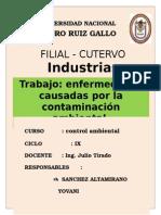 Enfermedades Causadas Por La Contaminació1 Monografia