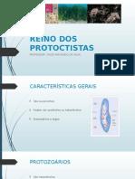 Apresentação - Protistas