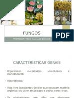 Apresentação - Fungos