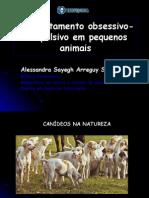Comportamento Obsessivo Compulsivo em Pequeno Animais