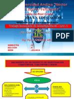 NACIMIENTO DE UN PROY INV FG II.ppt