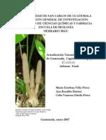 CONIFERAS DE GUATEMALA.pdf
