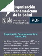23organizacinpanamericanadelasalud-100313145214-phpapp02