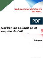 CaO (5).docx