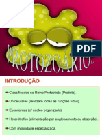 PROTOZOARIOS (1)