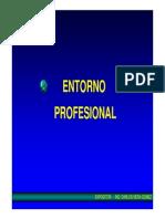 1.2 Entorno Profesional Produc 2013