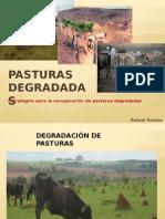 PASTURAS DEGRADADAS