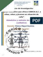 CANICA entrega final.docx