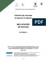 Mici afaceri de succes_vol I.pdf