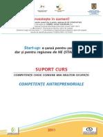 4. Suport Curs Antreprenoriat.pdf