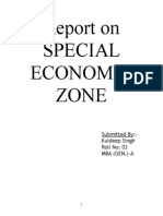 A Report on Special Economic Zone