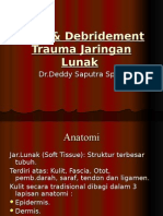 203619550 Luka Debridement Trauma Plus