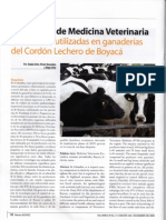 Estrategias Medicina Veterinaria Preventiva