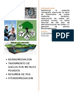 biorremediacion de suelos trbjo..docx