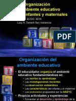 Organizacin de Un Ambiente Apropiado Para Infantes y Maternales 1228239060454232 8