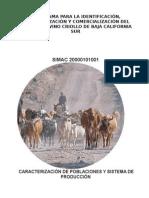 PROGRAMA IDENTIF., CARACTERIZA. COMERCIAL GANADO CRIOLLO BCS.doc