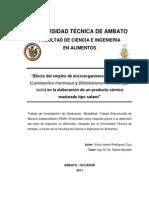 TESIS DE GRADO DE SALAMI