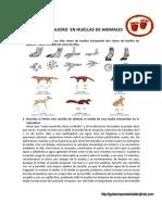 HUELLAS+DE+ANIMALES