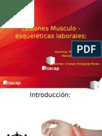 Ergonomia - Lesiones Musculo-Esqueleticas