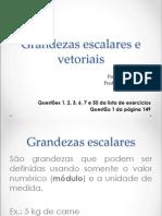 14 - Grandezas Escalares e Vetoriais (Roberto)