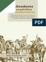 Salteadores y cuadrillas de malhechores. Una aproximación a la acción colectiva de la 'población negra' en el suroccidente de la Nueva Granada, 1840–1851