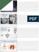 ABCD_vocal_technique_handout.pdf