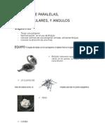 Informe de Angulos y Direcciones de Topo