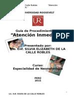 guiadeprocedimientodeatencionrnnormal