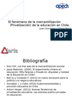 Privatización y Mercantilización de La Educación 2014