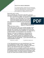 Concepto de Medio Ambiente Tarea de Chalaquito (1)