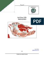ArcView GIS Imagenes