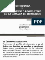 Estructura y Procedimiento Legislativo en La Cámara de Diputados