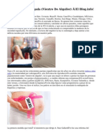 Maternidad Subrogada (Vientre De Alquiler) ¡El Blog.info!