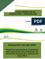 Componente Pyp Resolucion 412 (1)