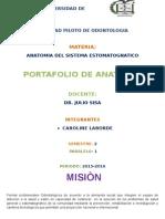 Region Sublingual y Gingivodentaria Testud